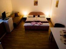 Accommodation Beclean, Otto Aparthotel