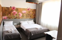 Accommodation Râu Sadului, Family Fewo Guest House