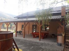 Accommodation Gurghiu, Picy Guesthouse