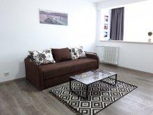 Accommodation Bălteni, Mirador Apartment