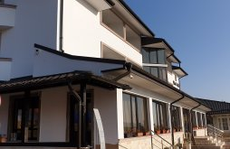 Accommodation Sasca Mare, Aldi Hotel
