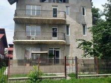 Villa Pucioasa, Elena és Ionuț Villa
