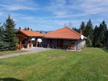 Casă de oaspeți Rareș, Casa de oaspeți Földvár