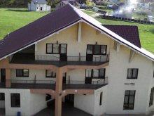 Accommodation Izvoru Berheciului, Păun Guesthouse