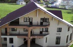 Accommodation Zberoaia, Păun Guesthouse