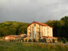 Vilă Pietroasa, Vila Metropol