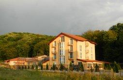 Villa Papmezővalány (Vălani de Pomezeu), Metropol Villa