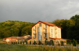 Villa Topești, Metropol Villa