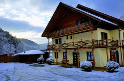Accommodation Pietroasa, Casiana B&B