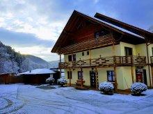 Accommodation Teliucu Inferior, Casiana B&B
