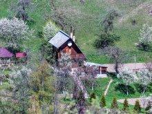 Accommodation Chirițeni, Dochița Chalet