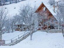 Accommodation Bistricioara, Tichet de vacanță, Dochița Chalet