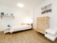 Apartment Gura Bohotin, Catargi Studio apartment