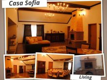 Accommodation Pojorâta, Sofia Guesthouse