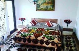 Cazare Botuș, Pensiunea Munții Bucovinei