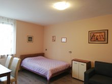 Accommodation Keszthely, Delux Apartment
