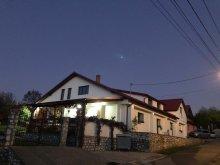 Casă de vacanță Runcușoru, Casa de vacanța Potoc