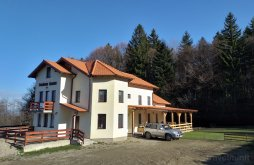 Accommodation Bruiu, Rozelor Guesthouse