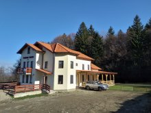 Accommodation Praid, Rozelor Guesthouse
