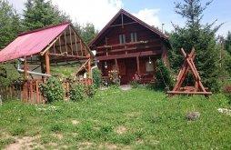 Casă de vacanță Pârtie de schi Vărșag, Casa Ria