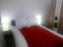 Accommodation Sighisoara (Sighișoara), Lyad Apartemnt