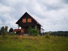 Accommodation Vărșag, Vad Orchidea Chalet
