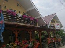 Accommodation Vadu Izei, Anca B&B