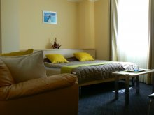 Hotel Minișu de Sus, Hotel Pacific