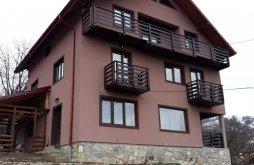 Villa Țibănești, La Constanța Villa