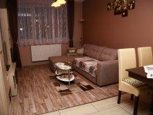 Accommodation Csánig, Ametiszt Apartment