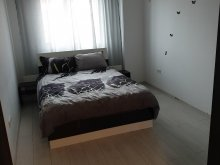 Accommodation Nenciulești, Ana Apartment