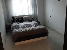Accommodation Sălcioara (Mătăsaru), Ana Apartment