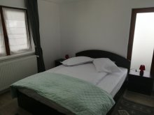 Accommodation Sărișor, De la mare la munte Guesthouse