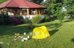 Bed & breakfast near Prejmer fortified church, Albinuța Guesthouse