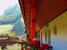Accommodation Turda Gorge, Vigh Guesthouse