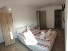 Accommodation Panticeu, Ana Villa