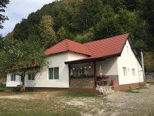 Villa Bistrița Bârgăului Fabrici, Ghiță Nyaraló