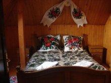 Accommodation Desești, La Ursanu Guesthouse