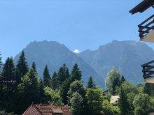 Panzió Râu Alb de Sus, Sport Panzió