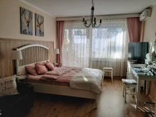 Accommodation Budapest & Surroundings, Frida Apartment