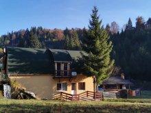 Cazare Vărșag, Casa de oaspeţi Vízimalom