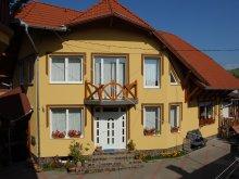 Accommodation Capalnita (Căpâlnița), Balázs Guesthouse