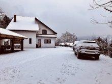 Guesthouse Bistrița Bârgăului Fabrici, The Guesthouse in the hill