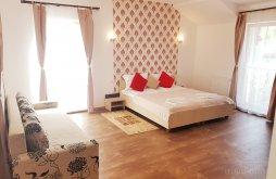 Accommodation Sânmartinu Sârbesc, Nice & Cozy Apartments