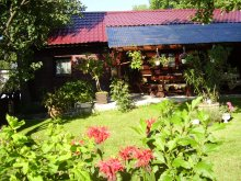 Accommodation Maramureş county, Ana Chalet