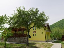 Accommodation Prunișor, Happy Guesthouse