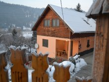 Accommodation Tulgheș, Laczkó Kuckó Pension