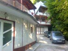 Pensiune Muntenia, Pensiunea Valea Iancului
