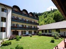 Hotel Ștrandul cu Apă Sărata Ocnița, Pensiunea Sibiel