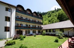 Hotel Szebenjuharos (Păltiniș), Sibiel Panzió